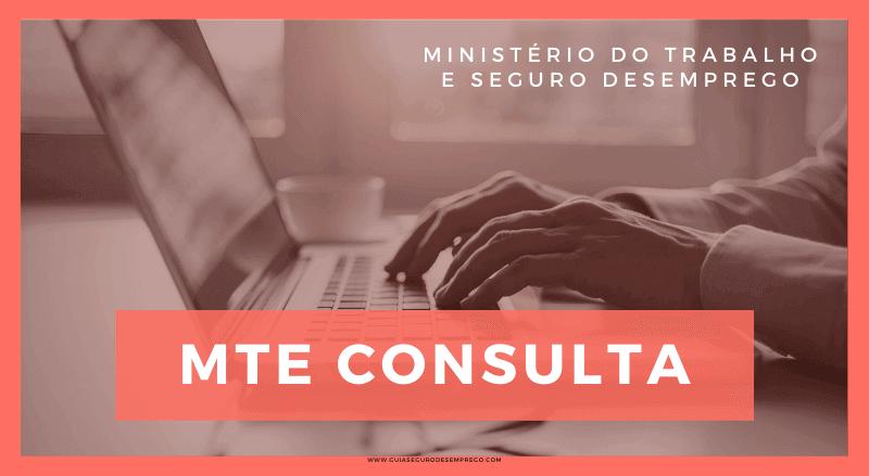 MTE Consulta